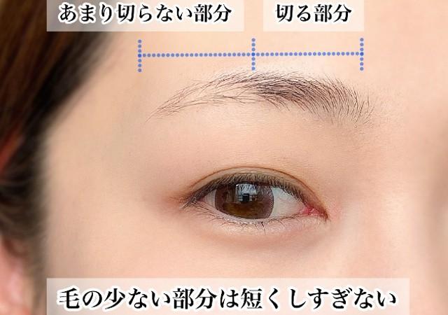 眉の整え方 眉の描き方